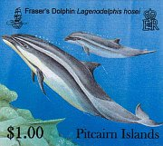dolphins $1.00