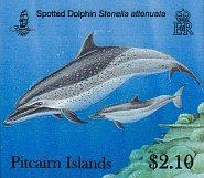 dolphins $2.10