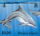 dolphins $3.00